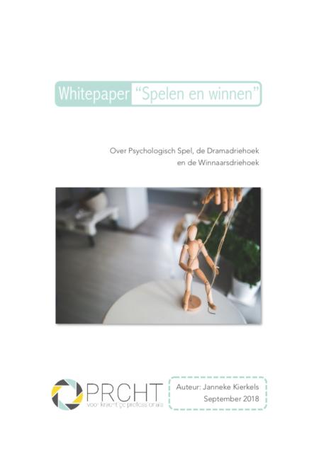 """Whitepaper """"Spelen en winnen"""" voorpagina"""